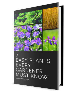 Free ebook download: 7 Easy PlantsEvery Gardener Must Know