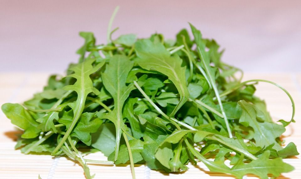 Eruca sativa (Arugula or Edible rocket)