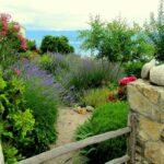 Garden styles - Mediterranean Gardens