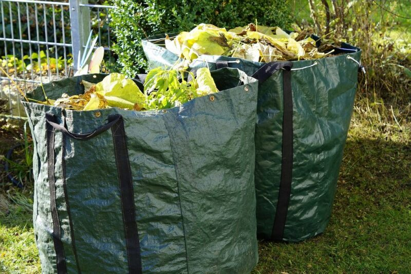 Gardening in November. What to do - fall leaves in plastic bags - dearplants.com