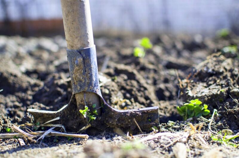 Gardening in October. What to do - Dig the ground