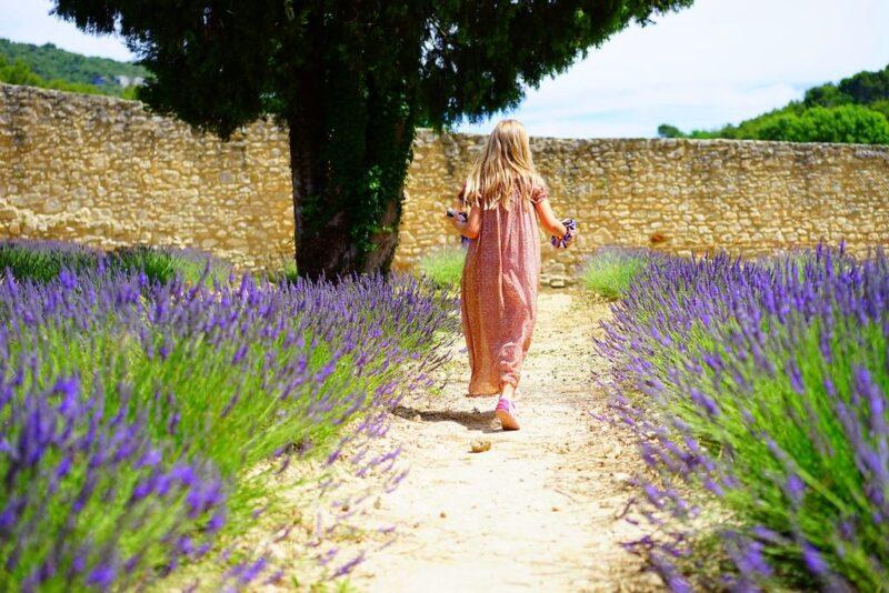 Mediterranean Gardens Dear Plants