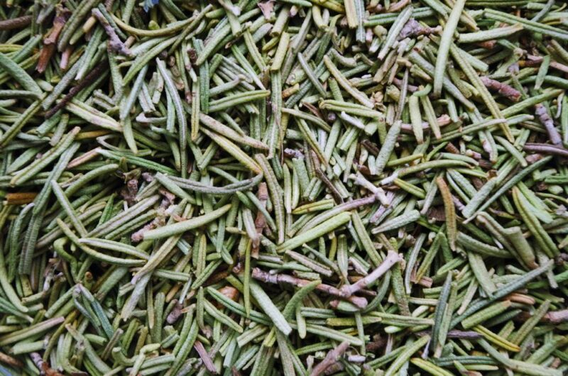 Rosmarinus officinalis (Rosemary) - harvested dry leaves