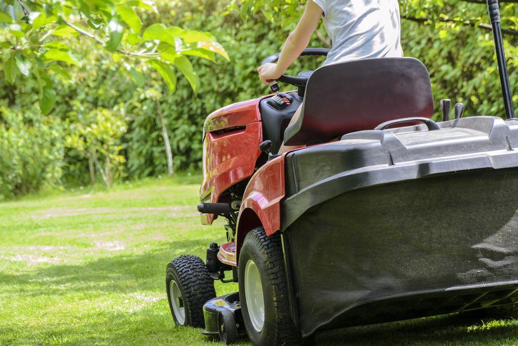 Garden tasks to do in May - dearplants.com