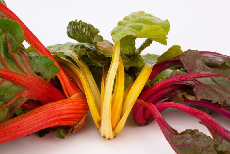 How to plant and grow swiss chard (Beta vulgaris subsp. vulgaris) - chard may have different colors - www.dearplants.com
